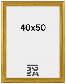 Västkusten Guld 14A 40x50 cm