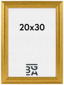 Västkusten Guld 14A 20x30 cm