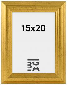 Västkusten Guld 14A 15x20 cm