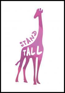 Giraffe stand tall - Rosa