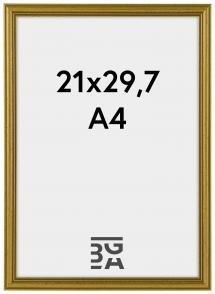 Classic Guld 21x29,7 cm (A4) ramar