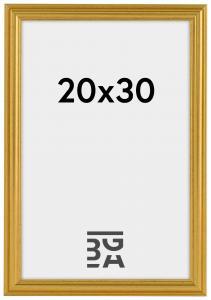 Frigg Guld 20x30 cm