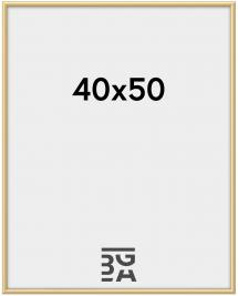 New Lifestyle Ram Guld 40x50 cm