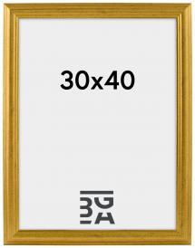 Västkusten Guld 14A 30x40 cm