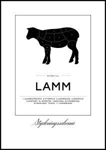 Styckningsschema lamm