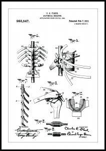 Patentritning - Anatomiskt Skelett III
