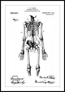Patentritning - Anatomiskt Skelett I