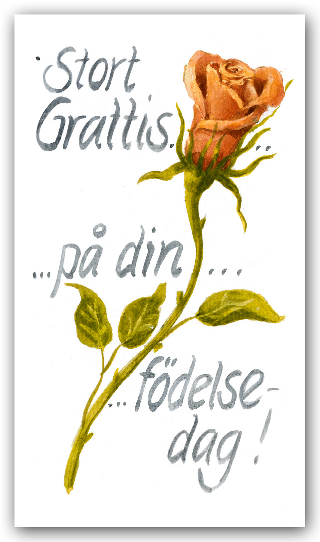 födelsedags grattis Grattis på din födelsedag   Motivnummer 159   BGA Fotobutik födelsedags grattis